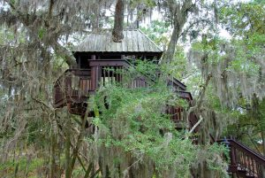 treehouse-646967_960_720